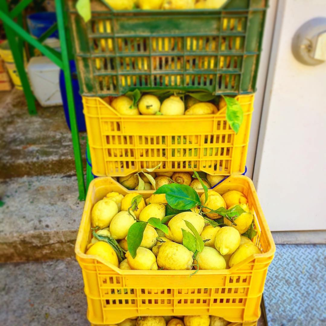 Baskets of Amalfitan Lemons, Amalfi Lemon Tour - Living Amalfi